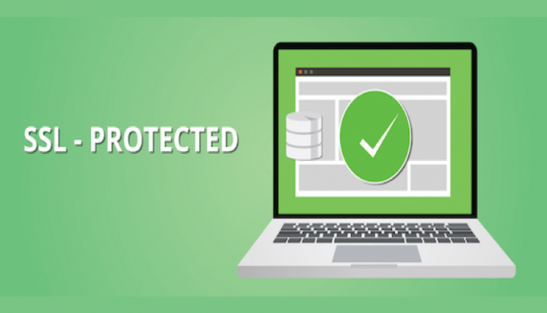 Importance of SSL Certificate